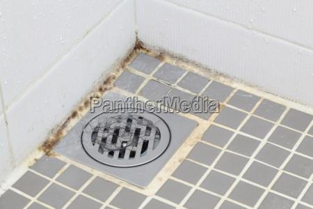 molde, no, banheiro - 6345043